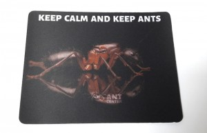 "Podkładka pod mysz/ formikarium z napisem ""Keep calm and keep ants"""